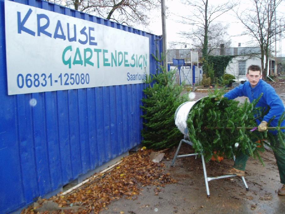 webseite weihnachtsbäume